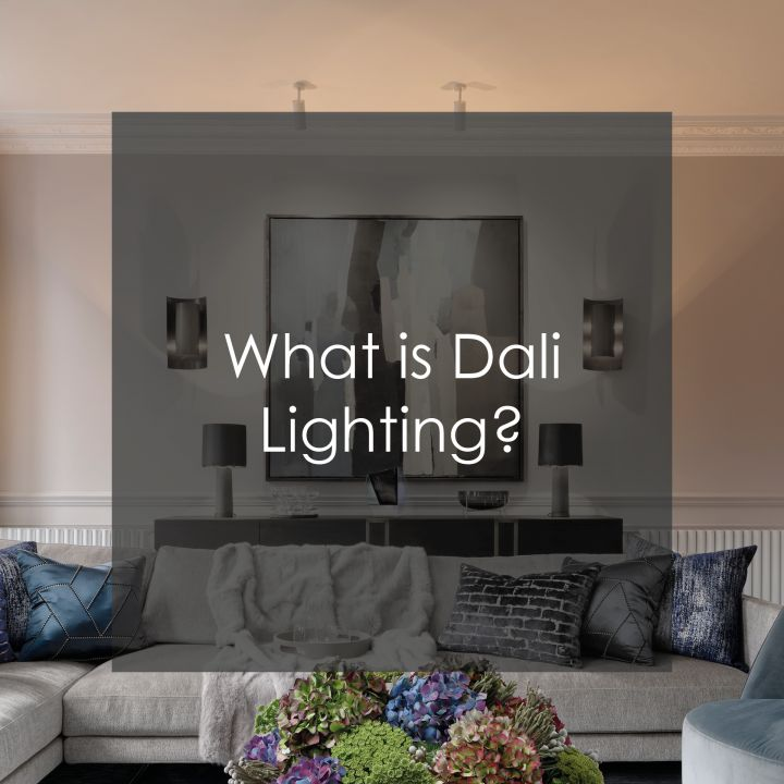 What is Dali Lighting?